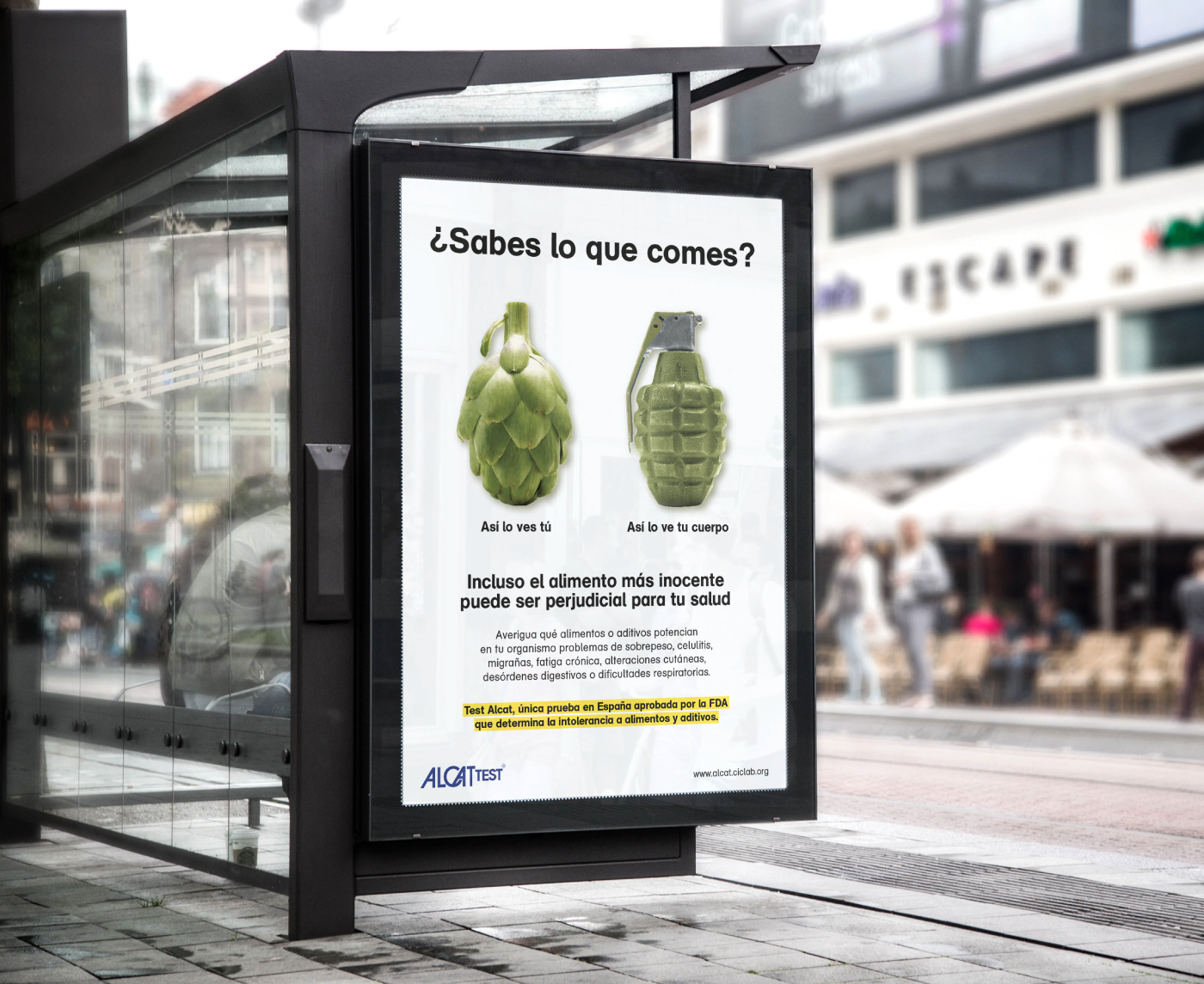 Creatividad Test alcat cic alcachofa granada